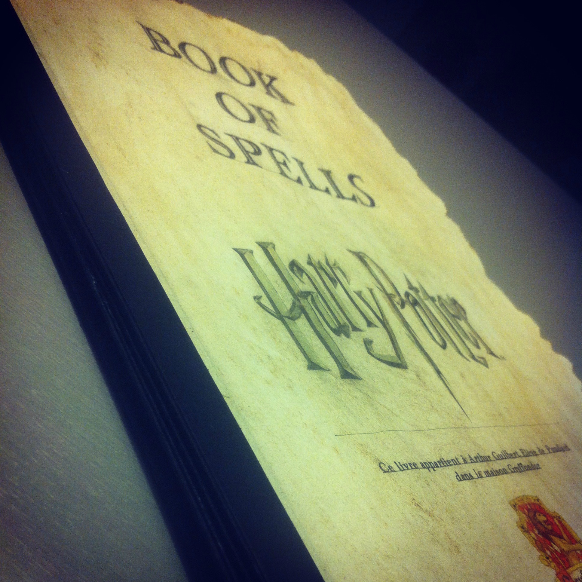 harry potter book of spells livre des sorts
