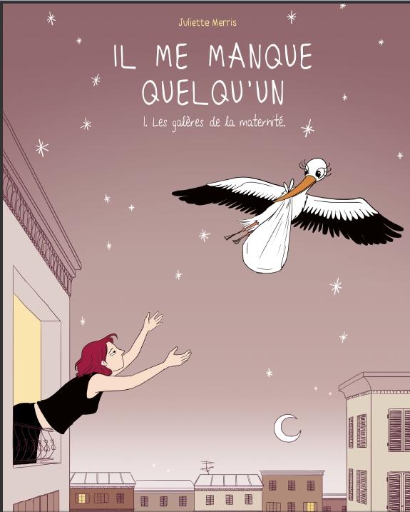 Il_me_manque_quelqu_un_une_BD_sur_les_galeres_de_la_maternite.j_1