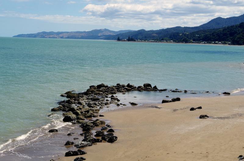 NZ Nat
